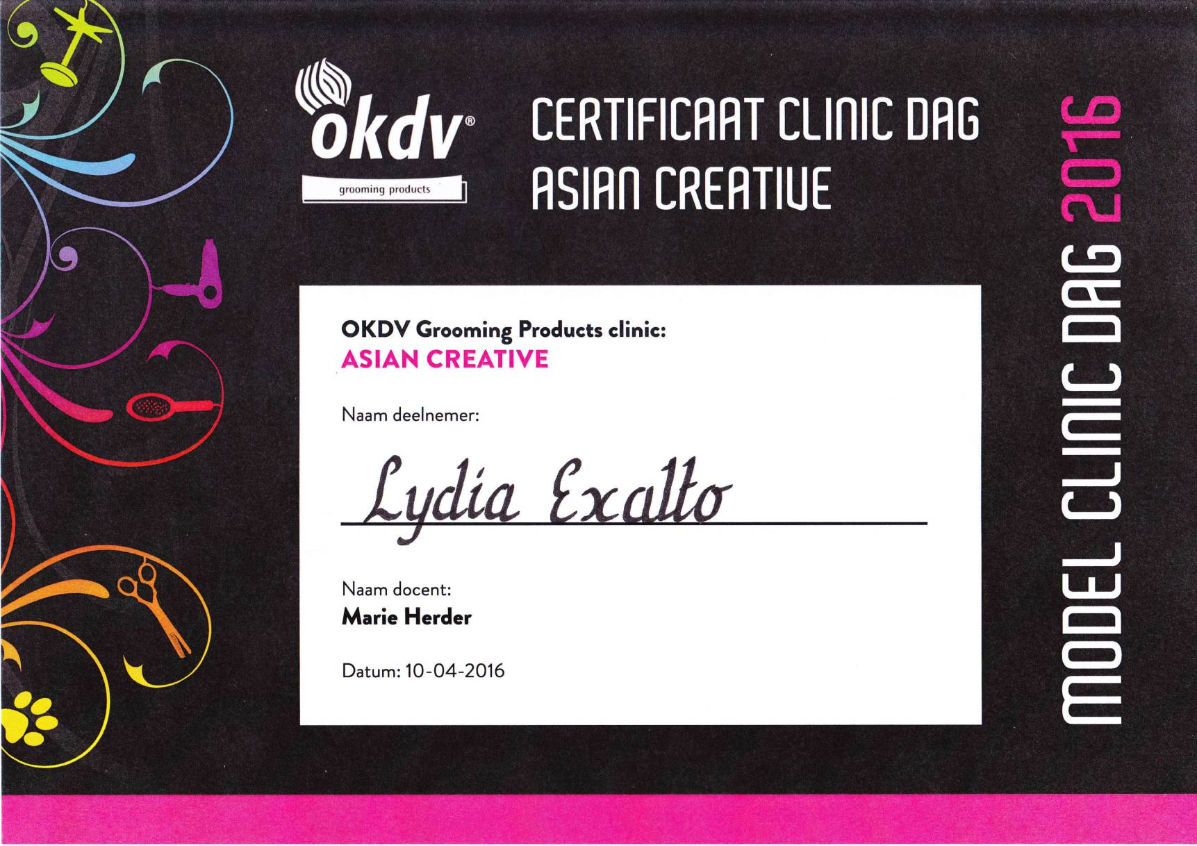 Certificaat clinic dag asian creative